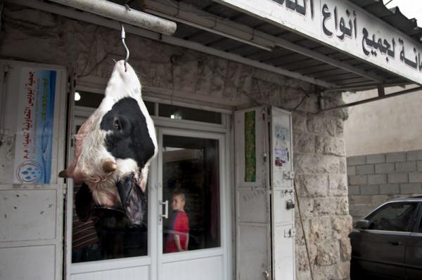 Sklep mięsny i ubojnia. Abu Dis. Zwierzęta często zarzynane są na dziedzińcu za sklepem. Ceny mięsa na Zachodnim Brzegu Jordanu są bardzo wysokie. Wołowina może kosztować nawet 100 złotych.