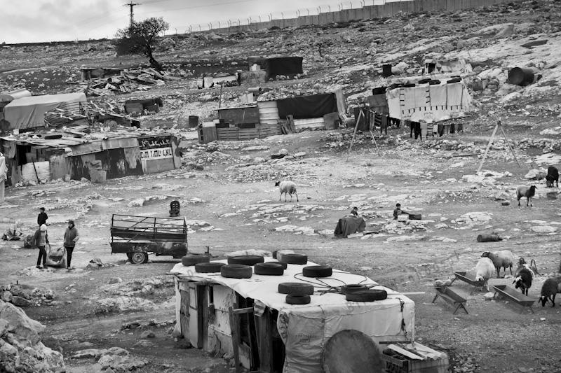 Beduini-23
